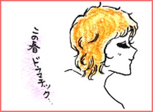 岡山の美容室、加羅のコラムイラスト